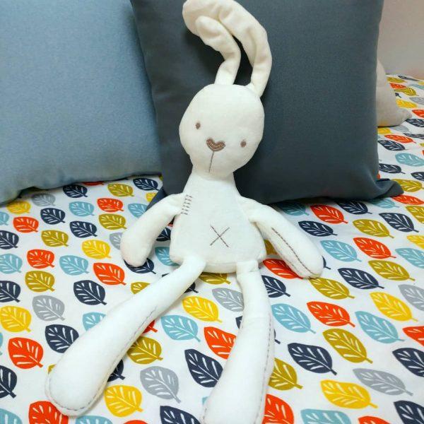 ウサギ#モデルルーム